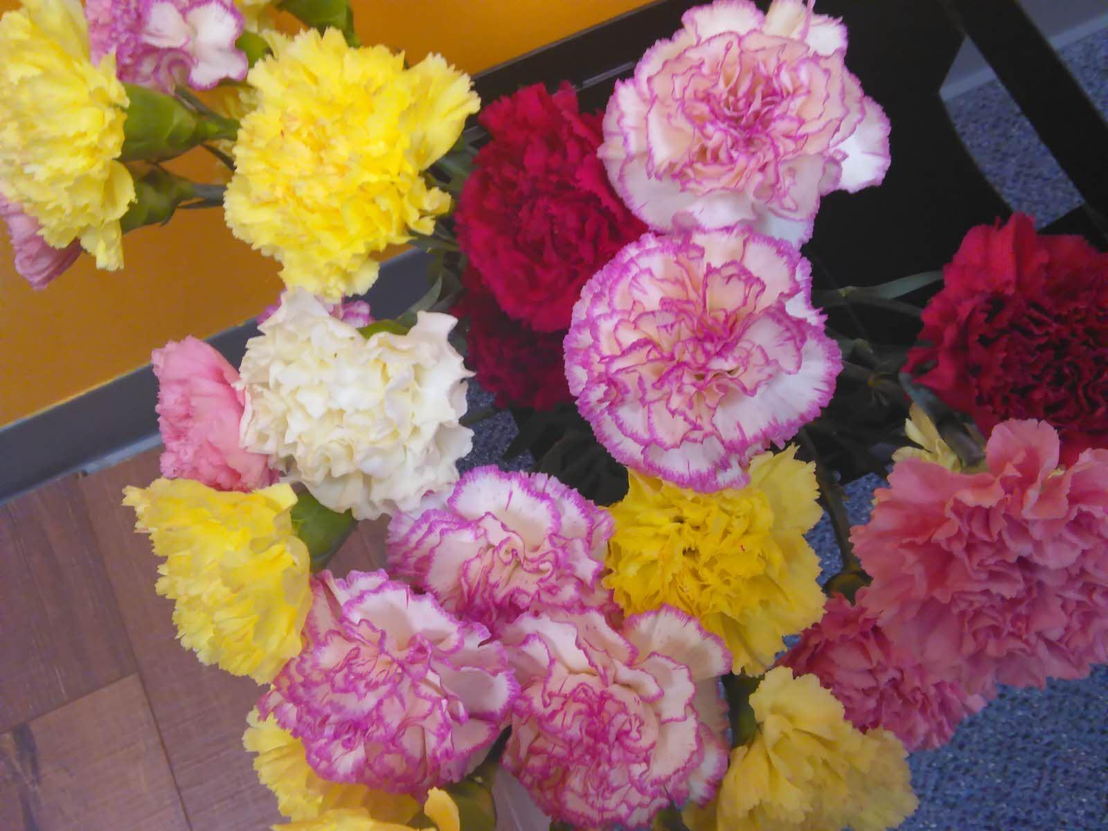 BlumenFeb17